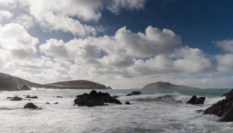 One last reason to love Dingle, not leave Dingle